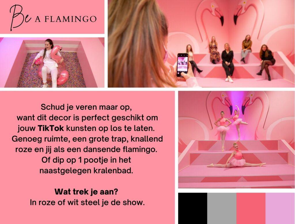 likeland inspiratie instagram museum roze decor flamingo